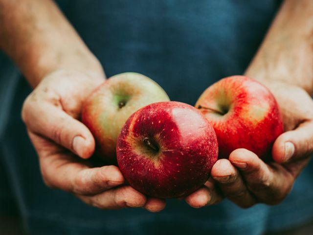 Makan Apel Setiap Hari, Apa Itu Baik Untuk Kesehatan? Ini Penjelasannya
