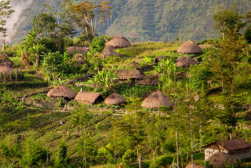 Tips Jalan - Jalan ke Wamena di Papua